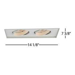 WAC Lighting - MT-230TL 2-lt PAR30 Line Voltage Multiple Spot Invisible Trim - MT-230 2-lt PAR30 Line Voltage Multiple Spot Invisible Trim