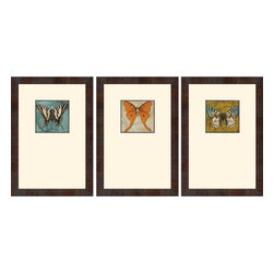 Paragon - Blue Wings I PK/3 - Framed Art - Each product is custom made upon order so there might be small variations from the picture displayed. No two pieces are exactly alike.
