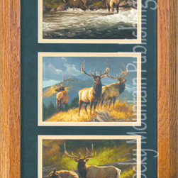 Rocky Mountain Publishing - Elk Triple, Greg Beecham Wildlife Art Framed Set 10x20 - For  the  lover  of  all  things  elk  in  your  life,  consider  Elk  Triple  as  a  perfect  wildlife  art  gift.  This  combination  of  pieces  shows  the  splendor  of  the  elk  in  a  variety  of  settings.  These  three  images  include  river  crossings  and  sitting  on  top  of  the  world.  The  details  combine  to  create  a  magnificent  combination  for  anyone  that  enjoys  the  elk.  Consider  the  variety  of  lighting  included  in  the  individual  paintings  as  well  as  the  landscapes.  Complete  with  mat  and  frame  this  artwork  will  be  an  amazing  gift.                  Dimensions:  Glass  and  Matting  measure  10x20  inches;  Exterior  Frame  dimensions  approximately  16x26  inches              Handsomely  matted  and  framed              Hardware  for  hanging  is  pre-installed              Treated  with  a  protective  coat  of  acid-free  sealant              Artist:  Greg  Beecham;  Allow  2  weeks  for  shipping