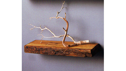 Traditional Display And Wall Shelves  by sprouthome.stores.yahoo.net