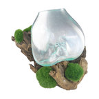 Bradbury HD - Organic Wood Branch With Glass Bowl - Custom - Natural Wood Branch with custom glass bowl
