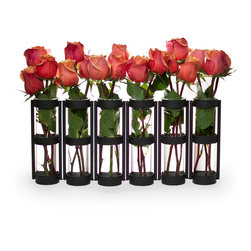 "Danya B. - Six Wide Tube Hinged Vases, Black - This hinged vase with six 8"" glass vials on a metal stand is easy to arrange with just a few flowers. Hinges allow you to set vase different ways for a playful accent. Set a few together for an elongated effect, or wrap it around a patio umbrella for an original centerpiece. With this unique and simple design anyone can crate beautiful arrangements to go on a round or rectangular table in minutes without proper floral training!"