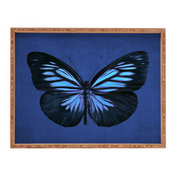 DENY Designs - Eric Fan Papillon Rectangular Tray - With DENY's multifunctional rectangular tray collection, you can use it for decoration in just about any room of the house or go the traditional route to serve cocktails. Either way, you��_ll be the ever so stylish hostess with the mostess!