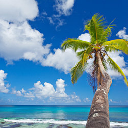 Murals Your Way - Single Palm Tree On Beach Wall Art - The palm fronds of the tree in this mural appear yellow-green against the deep blue of the sky