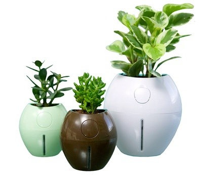 Contemporary Outdoor Planters by A+R