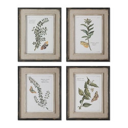 Uttermost - Grace Feyock Butterfly Plants Traditional Wall Art Set of 4 X-97015 - Prints are accents by heavily distressed, black outer wooden frames with heavily textured, off-white inner lips with a heavy taupe wash. Center portion of frames are covered in a sand faux linen.