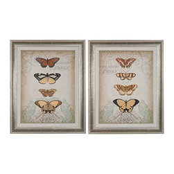 Sterling Industries - Cartouche and Butterflies Framed Art in Washed Wood, Set of 2 - Cartouche and butterflies i, ii - fine art giclee print on satin matte paper. Framed in our cracked silver finished wood frame and placed under glass. Matting is cream with silver trim.