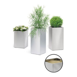 Blomus - Greens Stainless Steel Tall Planters - Small - Plant your beloved begonias, fabulous ferns and stunning schefflera in something worthy of notice. These planters add drama and sophistication to your favorite fauna, while offering you a plastic liner for easy planting.