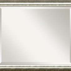 Traditional Wall Mirrors by Amanti Art