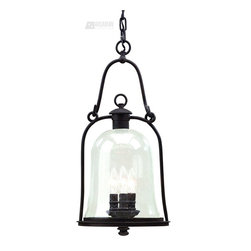 Troy Lighting - Troy Lighting Owings Mill Transitional Outdoor Pendant Light X-BN7649F - This beautiful transitional outdoor pendant light is reminiscent of a lantern that might be found back in the Victorian Era. The hand-forged iron is not only durable but ensures lasting quality. The natural bronze finish gives an aged look while the clear seeded shade adds a touch of character and softens the light.