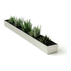 "Gus Modern - Gus Modern Fruit Trough - Make a fresh statement in your home with this sleek trough. Maybe ""home decor"" and ""trough"" don't exactly go together, but this modern piece is the perfect place to store your fruit, herb plants and kitchen tools."