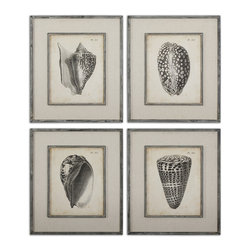 Uttermost - Vintage Diderot Shells Art Set/4 - Prints Are Accented By Oatmeal Linen Mats Then Surrounded By Dark Charcoal Frames With Heavy Gray Distressing And A Taupe Glaze. Prints Are Under Glass.