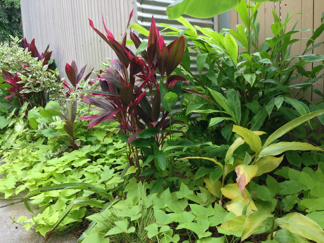 An Apartment Complex Gets a Garden Makeover: Part 1 of 2
