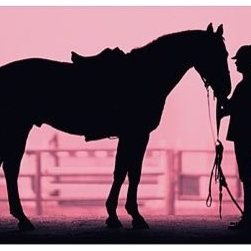 Equestrian Wall Mural | PBteen - A striking silhouette of a stable scene is printed on a single panel of fabric.