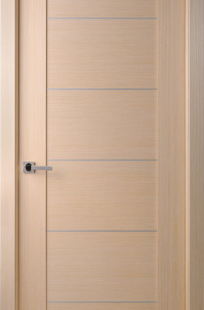 Contemporary Interior Doors by Doors And Beyond