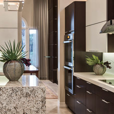 Contemporary  by Barbara Rooch Interior Environments, Inc.
