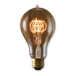 Bulbrite - Bulbrite Victorian Loop Filament A23 Incandescent Edison Light Bulb - 4 pk. Mult - Shop for Light bulbs from Hayneedle.com! Antique fixtures and accessories can be hard to find and the Bulbrite Victorian Loop Filament A23 Incandescent Edison Light Bulb - 4 pk. are here to make it just a little easier. These nostalgia bulbs are perfect for antique lamps signage and a variety of other applications. Available in your choice of wattage.About BulbriteBulbrite is a family-owned company started in 1971 and based in Moonachie New Jersey. Bulbrite is renowned for their commitment to innovation education and service. They are a leading manufacturer and supplier of innovative energy-efficient light source solutions. Bulbrite is an award-winning company. Most recently their president Cathy Choi received the 2010 Residential Lighting Industry Leadership Award and the Bulbrite Swytch LED Desk Lamp received the 2010 Home Furnishing News Award of Excellence. They have introduced award-winning products and offer an extensive line of light bulbs including LEDs HID compact fluorescents fluorescents halogens krypton/xenon incandescent bulbs and specialty lamps. Bulbrite is an active member of the ZHAGA the American Lighting Association a silver sustaining member of the Illuminating Engineering Society of North American (IESNA) an Energy Star Partner a Lighting Facts LED Product Partner a member of LUMEN Coalition and a member of the International Dark Sky Association.