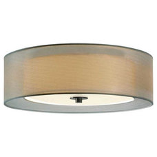 Transitional Ceiling Lighting by Lightology