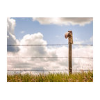 "Retired Cowboy Boot - Western Fine-art Photograph, 36"" X 27"" - This well-loved and well-used cowboy boot has some miles on it.  It is only fitting that it's final resting place overlooks the land that it once worked.  Perched on the post of a barbed-wire fence this boot soaks up the sun and remains as tireless and steadfast as it did when worn by its owner."