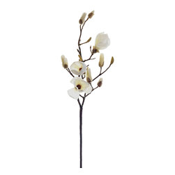 Silk Plants Direct - Silk Plants Direct Magnolia (Pack of 6) - Cream - Pack of 6. Silk Plants Direct specializes in manufacturing, design and supply of the most life-like, premium quality artificial plants, trees, flowers, arrangements, topiaries and containers for home, office and commercial use. Our Magnolia includes the following: