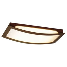 Bathroom Vanity Lighting Zelkova Rectangular Flushmount by Eurofase