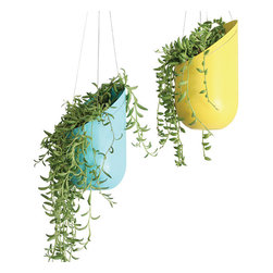 Wallter - Outdoor/Indoor Hanging Planter - Wallter - Elevate your plants! Great for small delicate succulents, cactus, herbs, or lettuce. Holes for drainage in each pot.