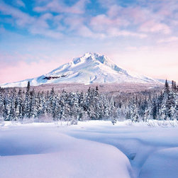 Mountain Graceful Wall Mural - An incredible winter scenic mural with fresh snow under a blue sky. Dominated by an impressive mountain peak this mural makes resplendent wall art.