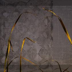 Golden Reeds - © Ryn Clarke