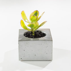 Brooklyn Cast Concrete Succulent Planter - The classic geometry of a cube takes its reign in the purist design of this succulent planter, a timeless rustic modern vessel to display your small succulents or other mini plants. Handmade in small batches in Brooklyn, NY, each succulent planter is constructed of built-to-last solid cast concrete perfect for indoors or outdoors, and arrives sealed with a non-toxic food safe sealer, cork pads, and a hand stamp on the bottom.