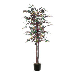 Vickerman - 6' Mystic Ficus Tree - 6' Mystic Ficus Tree natural hardwood trunks. In Black Plastic Pot and American made excelsior.