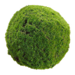 Silk Plants Direct - Silk Plants Direct Moss Ball (Pack of 4) - Silk Plants Direct specializes in manufacturing, design and supply of the most life-like, premium quality artificial plants, trees, flowers, arrangements, topiaries and containers for home, office and commercial use. Our Moss Ball includes the following: