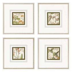 Paragon - Botanical Quadrant PK/4 - Framed Art - 7696 - Each product is custom made upon order so there might be small variations from the picture displayed. No two pieces are exactly alike.
