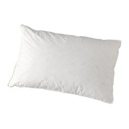 "A Little Pillow Company - ""A Little Pillow Company"" Toddler Pillow - 13"" x 19"" (Hypoallergenic) - Ages: 2 - 4 years"