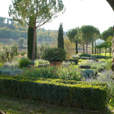 Modern Landscape by Mariachiara Pozzana