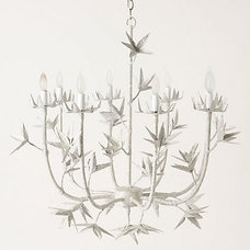 Contemporary Chandeliers by Anthropologie