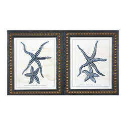 Davis Art - Davis Art Indigo Starfish Wall Art, Set of 2 - The Old World textbook drawing style of the pairs of starfish in this wall art set contrasts with the funky, beaded frame of each print. Visual texture and a fresh white background cause the starfish to stand out with their rich navy blue coloring to create a unique nautical feel in a space. The eclectic combination of traditional and coastal styles for these wall decor pieces builds mysterious ocean-inspired moods.Lithograph printGold-beaded brown frame includedReady to hang; mounting hardware includedSet of two (2) wall printsMade in the USA