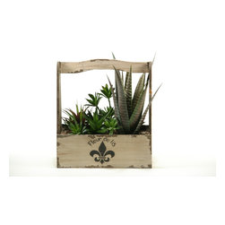 """D&W Silks - Artificial Mixed Agave, Succulents and Echeveria in Fleur-De-Lis Planter - It's amazing how much adding a plant can change the look of a room or decor, but it can be difficult if your space is not conducive to growing plants, or if you weren't exactly born with a """"green thumb."""" Invite the beauty of nature into your home without all the upkeep with this maintenance-free, allergy-free arrangement of artificial mixed agave, succulents and echeveria in a rectangle fleur-de-lis planter. This is not a living plant."""