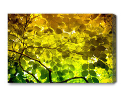 alignbetween art | design - Mysterious Leaves - Nature Art Canvas Print, Small - A blanket of North Carolina mountain leaves, hiking up to Chimney Rock. This canvas art print by alignbetween is vivid and high contrast - complementing dark and earthy jewel tones of green, yellow and orange.  Mysterious Leaves brings nature inside, freezing in time a quiet moment on the mountain.