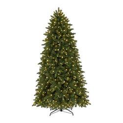 Classic Fraser Fir Christmas Tree - A HOLIDAY ICON IN TREE CLASSICS' CLASSIC FRASER FIR CHRISTMAS TREE