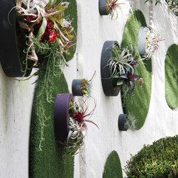 Living Walls (various) -