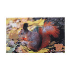 Esschert Design - Printed Doormat - Squirrel - The squirrel is a symbol of gathering, so greet your friends to your door in a homey way with this printed doormat. The bright squirrel will act as an invitation when you lay this ecofriendly rubber doormat on your front stoop.