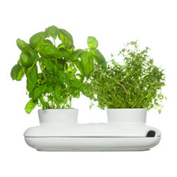 Sagaform - Herb Pot Duo - A minimal yet beautiful pair of stoneware planters in a watering pot to grow your favorite herbs! Perfect for indoor use, the Herb Pot Duo helps to keep your herbs easily accessible and fresh - the perfect gift for your favorite chef, or as a housewarming gift.