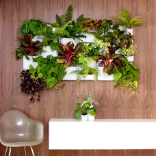 Modern Plants Urbio Modular Garden and Wall Organizer