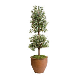 Olive floor topiary - Bring a touch of Italy into your home with this topiary inspired olive tree.  The tree is planted in a tea-stained terra-cotta pot and will look great in any room of your home, especially the kitchen, sunroom or dining room.