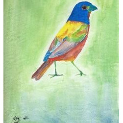 Painted Bunting (Original) by Dalton Sexton - This piece was a labor of love. Very few birds can match the rainbow this fellow provides. I am still waiting for him to fly off the paper.