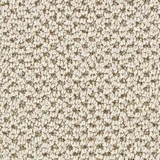 Carpet Flooring by Home Depot