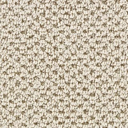 Mount Vernon Sisal 6 in. x 9 in. Take Home Sample-896207 at The Home Depot -