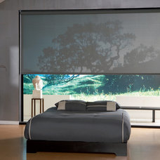 Asian Roller Blinds by Window Fashions by Anderson's