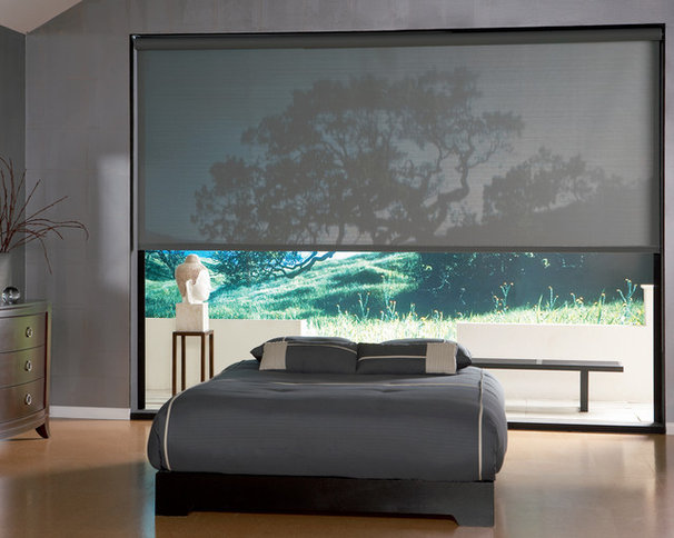 Asian Roller Shades by Window Fashions by Anderson's