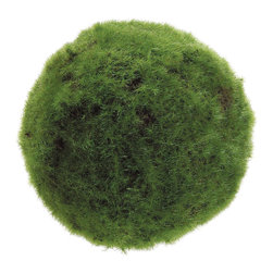 Silk Plants Direct - Silk Plants Direct Moss Ball (Pack of 6) - Pack of 6. Silk Plants Direct specializes in manufacturing, design and supply of the most life-like, premium quality artificial plants, trees, flowers, arrangements, topiaries and containers for home, office and commercial use. Our Moss Ball includes the following: